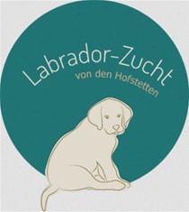 Labrador: beliebteste Hunderasse 2013 | Leinfelden-Echterdingen
