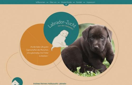 Firmenprofil von: Labrador: beliebteste Hunderasse 2013