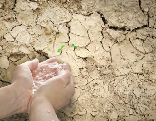 Firmenprofil von: Wasser als Konfliktstoff